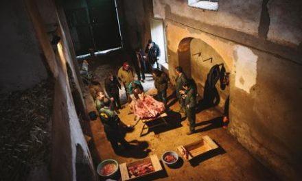El diario inglés Financial Times publica un reportaje de la matanza del cerdo tradicional extremeña