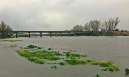 La crecida del río Alagón en Coria obliga a desalojar al Cirskus Kaos por riesgo de inundación