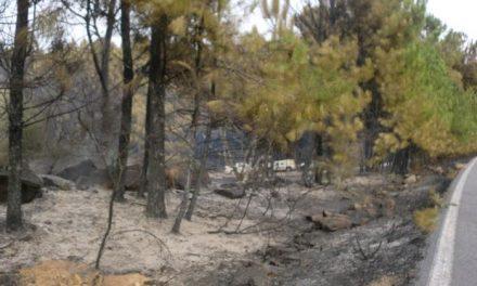 Un retén continúa en labores de vigilancia en el incendio en Valverde del Fresno, controlado desde el sábado