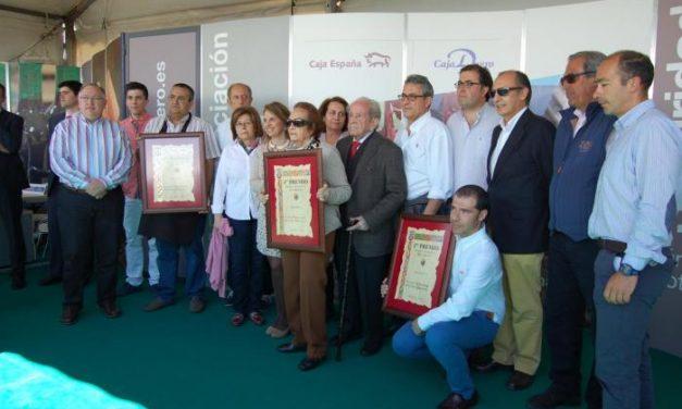 Tres quesos extremeños y un castellano-manchego ganan la cata concurso nacional de Trujillo