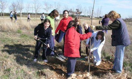 Escolares de Coria y Puebla de Argeme aprenden a cuidar el entorno y plantan un total de 92 árboles y arbustos