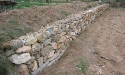 El Centro del Medio Rural de Moraleja enseña a levantar muros a base de piedras secas en fincas agrícolas