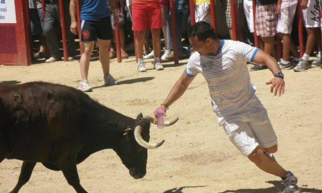 Ceber Tauro se encargará de explotar y organizar los espectáculos taurinos de las fiestas de  San Buenaventura