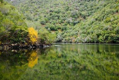España y Portugal ratifican el acuerdo para la creación y gestión conjunta del Parque Internacional del Tajo-Tejo