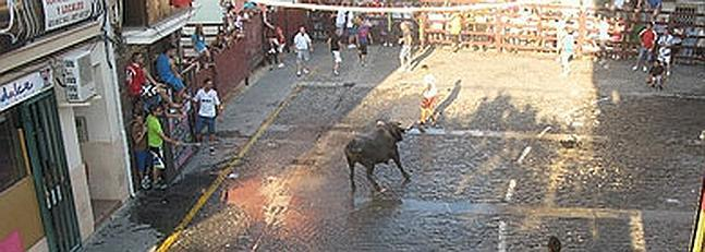 El colectivo de autónomos de Moraleja aportará un toro de la ganadería del Madroñal en San Buenaventura