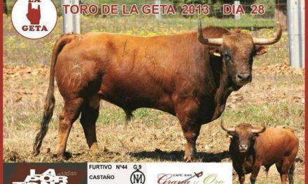 La peña La Geta cambia el toro que iba a lidiarse en la tarde del día 28 en las fiestas de San Juan de Coria