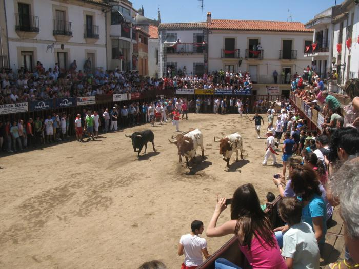 El primer encierro matinal de las fiestas de San Juan de Coria finaliza sin incidentes reseñables