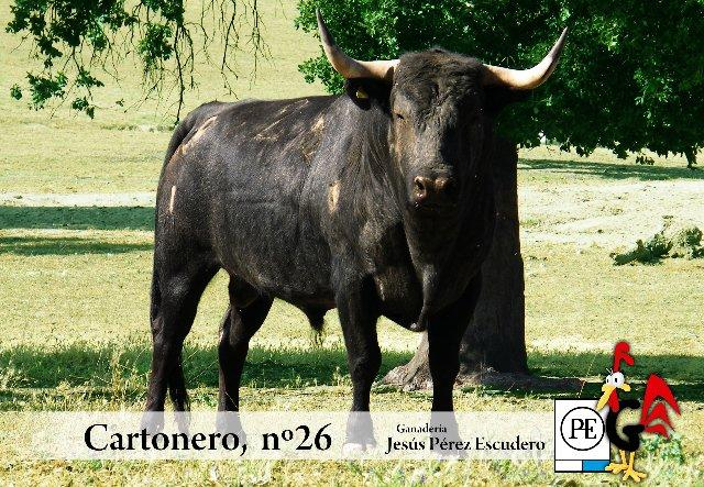"La Peña ""Gallo Filisuco"" aportará un toro de Pérez Escudero a las fiestas de San Buenaventura de Moraleja"