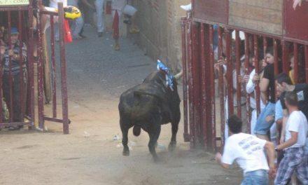 Los dos heridos por asta de toro  están ingresados en el Hospital de Coria y evolucionan favorablemente