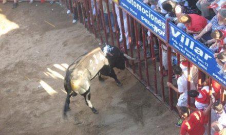Dados de alta los dos heridos por asta de toro en el festejo de la tarde del día 24 en los Sanjuanes de Coria
