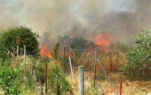 Un incendio de pastos a primera hora de la tarde afecta a un paraje próximo a Montehermoso