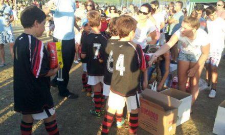 Cáritas de Plasencia recibe 300 kilos de alimentos donados por los alevines del encuentro de Carcaboso