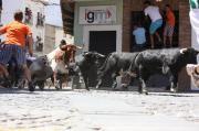 El Ayuntamiento de Moraleja recuerda las normas de los corredores durante San Buenaventura 2013