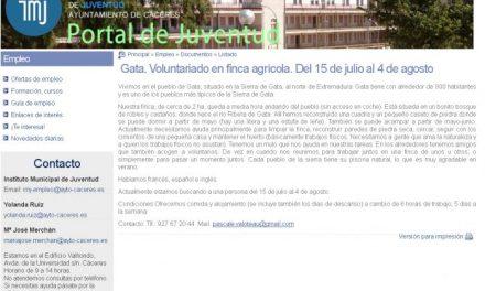 CCOO exige la retirada de una oferta de empleo de la web del Ayuntamiento de Cáceres al ser «abusiva»