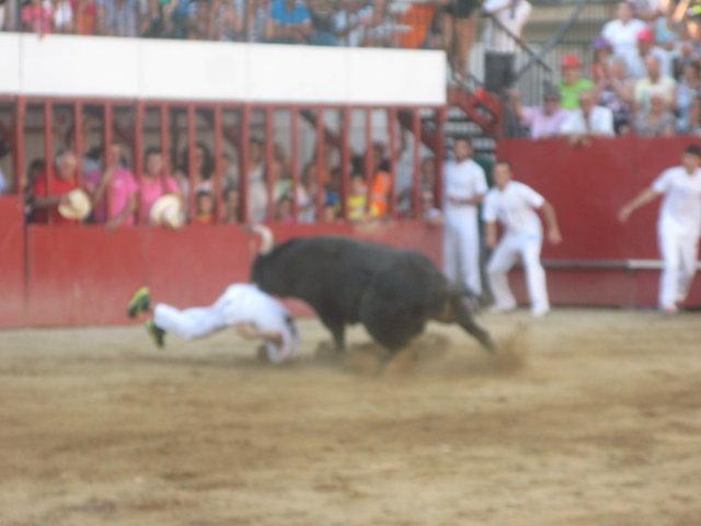 Los dos heridos por asta de toro en las fiestas de Moraleja han sido operados y evolucionan favorablemente