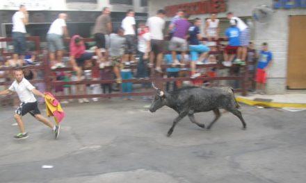El último festejo taurino de las fiestas de San Buenaventura de Moraleja finaliza sin ningún herido