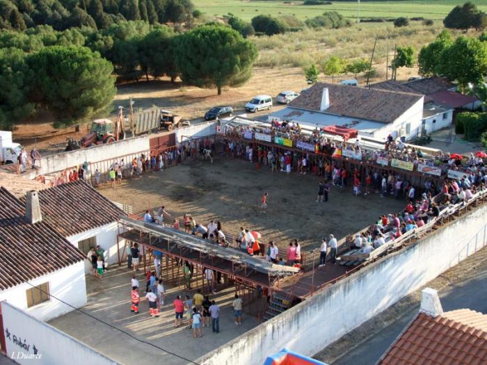 Valdencín celebra este fin de semana sus festejos taurinos con cuatro toros de Jara del Retamar y Urcola