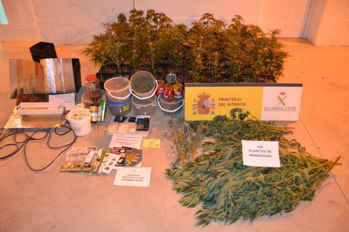 La Guardia Civil asesta un nuevo golpe al cultivo de marihuana en una intervención en Tejeda