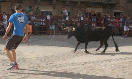 Las fiestas de San Pantaleón de Villasbuenas de Gata concluyen sin heridos por asta de toro