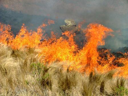 El Plan INFOEX declara el Nivel 1 por un incendio cercano a unas viviendas en la Sierra de Santa Bárbara