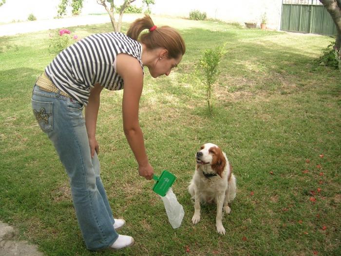 Cáceres sanciona a diez ciudadanos por incumplir la normativa sobre animales domésticos