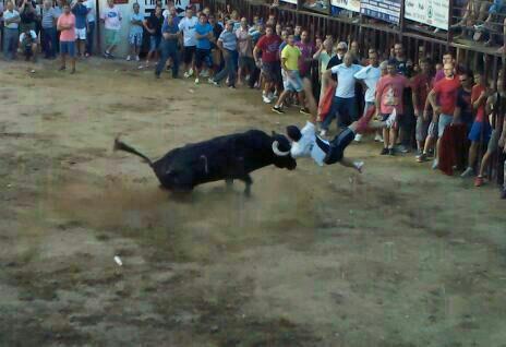 "Un toro de Victorino Martín cornea en Torrejoncillo al recortador moralejano Emilio ""Motoro"""