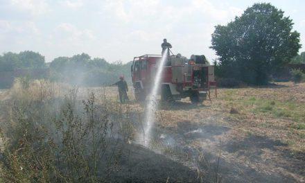 Los cuatro incendios del viernes arrasan 1.400 hectáreas y 3 de ellos fueron intencionados