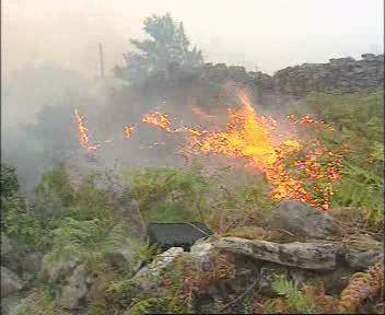 Los efectivos del Plan Infoex dan por controlado el incendio de Cuacos de Yuste y se desactiva el Nivel 1
