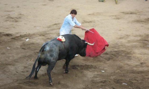 El torero Pascual Gómez herido muy grave tras ser corneado en una capea en Fuenteguinaldo