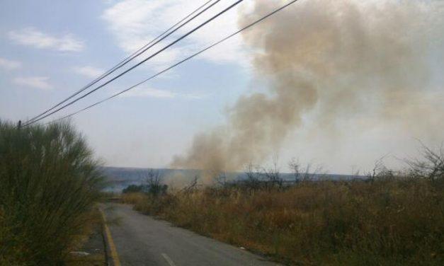 El Infoex desactiva el Nivel 1 al quedar controlado el incendio cercano a unas viviendas en Coria