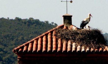 El circuito Por Tierras Rayanas impulsa la formación ambiental en Valencia de Alcántara
