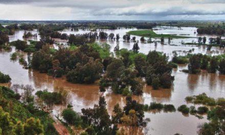 Agricultura convoca ayudas de 1,4 millones de euros para paliar daños causados por las inundaciones de abril