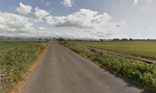 "Emilio Borrega afirma que la obra de la carretera entre Vegaviana y Moraleja se hará ""de manera inmediata"""