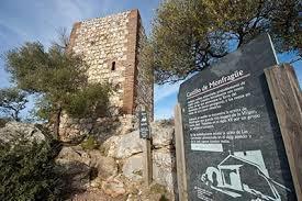 La gran mayoría del Patronato de Monfragüe aprueba el Plan Rector de Uso y Gestión del enclave