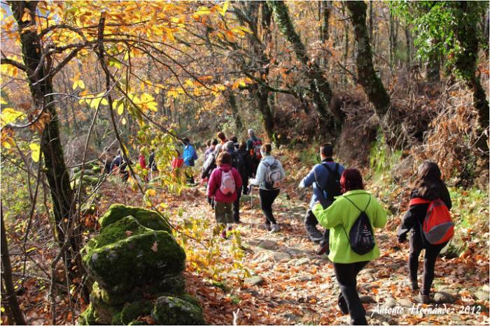 El Otoño Mágico del Valle del Ambroz 2013 se inaugurará el día 31 e incluye la música de Jarabe de Palo