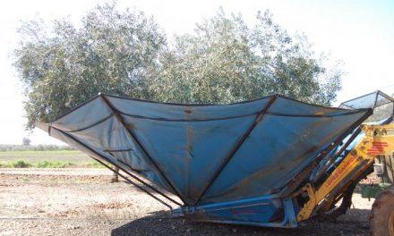 Fallece una mujer de 44 años en una finca de Palomero tras golpearse con una máquina agrícola