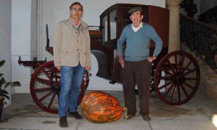 Un vecino de Valencia de Alcántara cede una calabaza de 70 kilos para que sea expuesta en el ayuntamiento