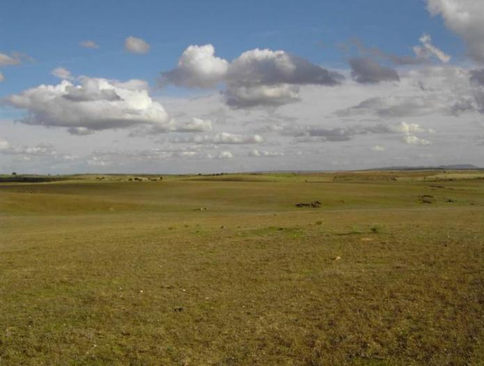 Adesval organiza una jornada de sensibilización ambiental sobre los llanos del Guijo