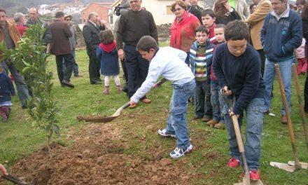 La diputación cacereña entrega más de 10.000 plantas y árboles a 63 municipios de la provincia