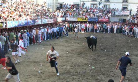 Empresarios taurinos y Ayuntamiento de Coria trabajan en el diseño de un evento taurino
