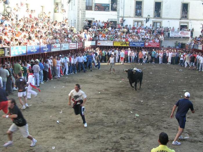 El 1 de marzo finaliza el plazo para optar a ser reinas y damas de las Fiestas de San Juan 2008 de Coria