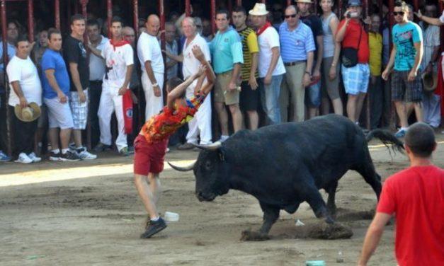 Una asociación antitaurina presenta dos denuncias contra las fiestas de San Juan 2013