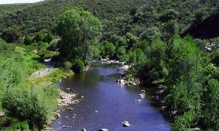 La CHT autoriza una concesión de agua de 435.000 metros cúbicos  para uso industrial en Calzadilla