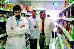 Acenorca comercializa 18 millones de kilogramos  de aceitunas manzanilla cacereña