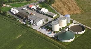 El consistorio de Moraleja declara de interés social la creación de una planta de biomasa en el municipio