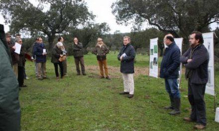 La Mesa de Protección de la Dehesa recomienda aplicar medidas preventivas para evitar más focos de la seca