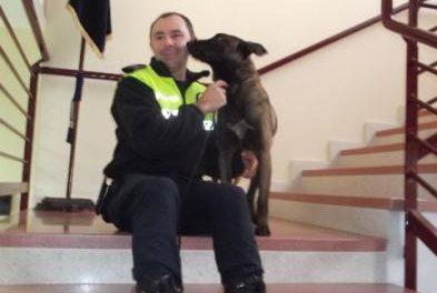 La policía local de Plasencia elimina el «trapicheo» en los institutos gracias a la actuación del perro antidroga