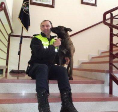 """La policía local de Plasencia elimina el """"trapicheo"""" en los institutos gracias a la actuación del perro antidroga"""