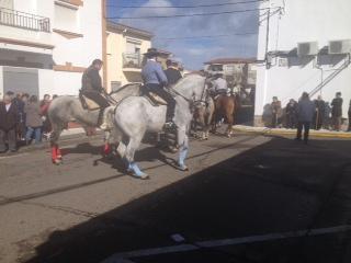 Moraleja celebra la fiesta tradicional de San Blas con música, dulces típicos y sin ningún incidente