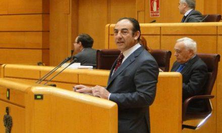 El Senado aprueba una moción que defiende el sector cárnico para potenciar la exportación